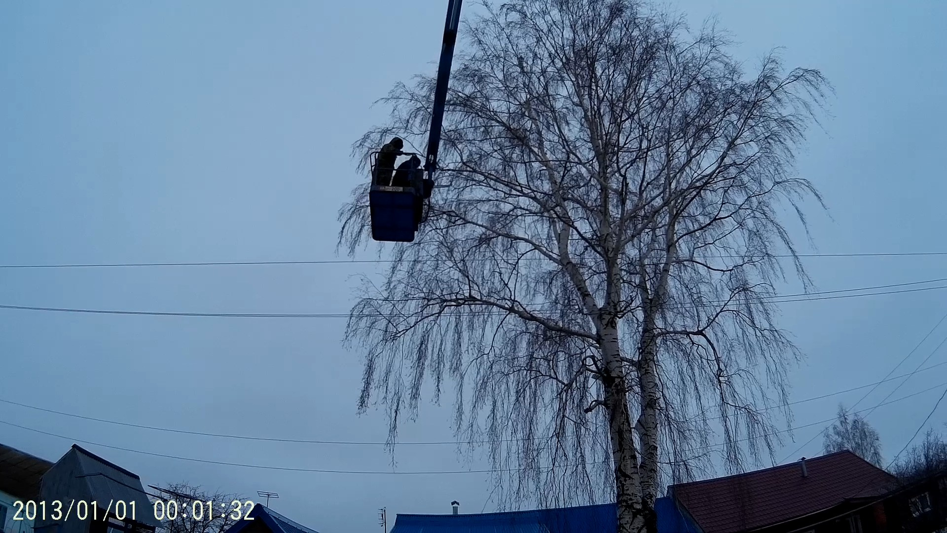 спил дерева в Михайлове