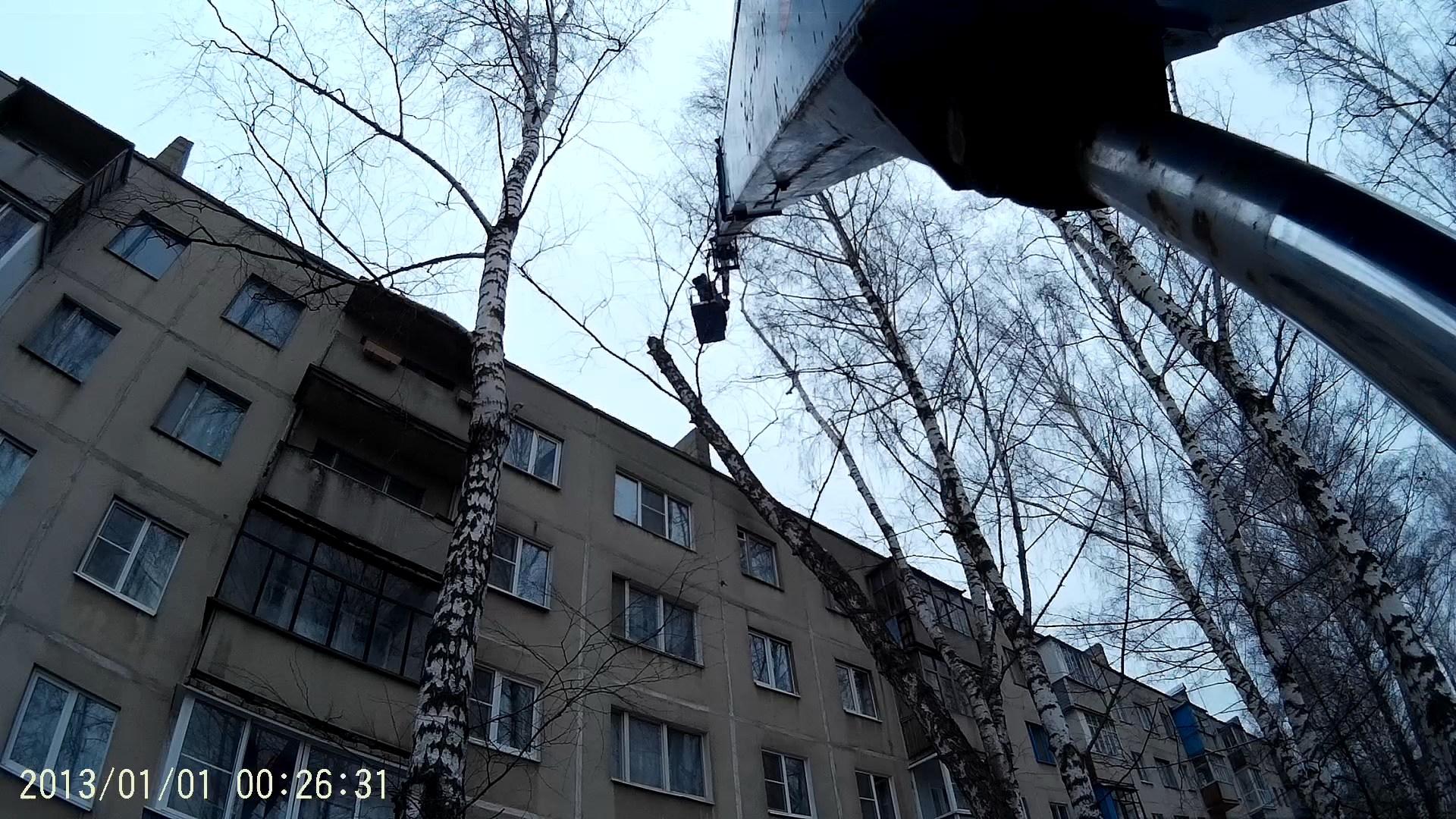 Спиливание дерева в городе