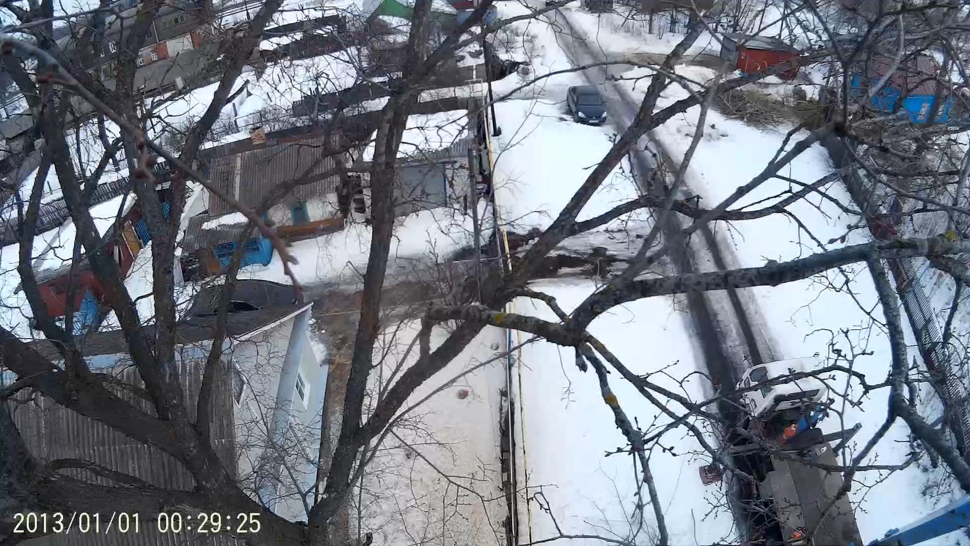 Спил дерева в Пронске