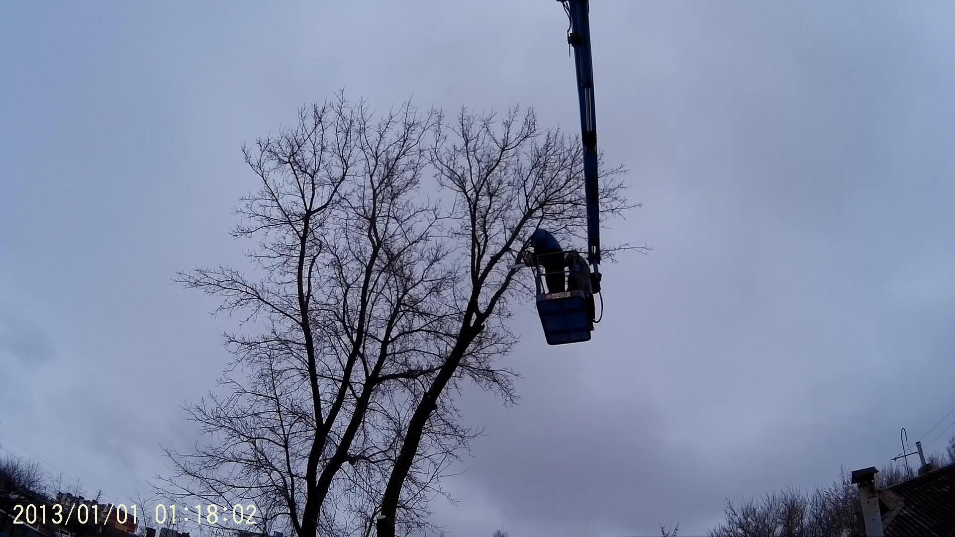 спиливание дерева в