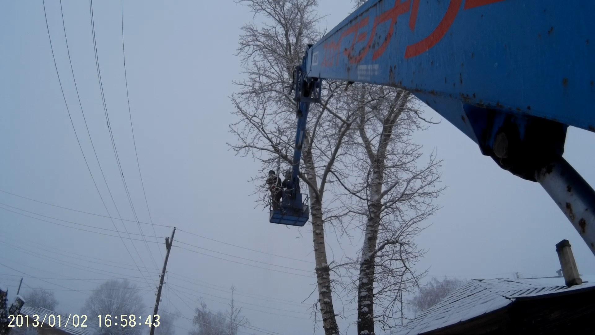 спиливание деревьев в Рязани