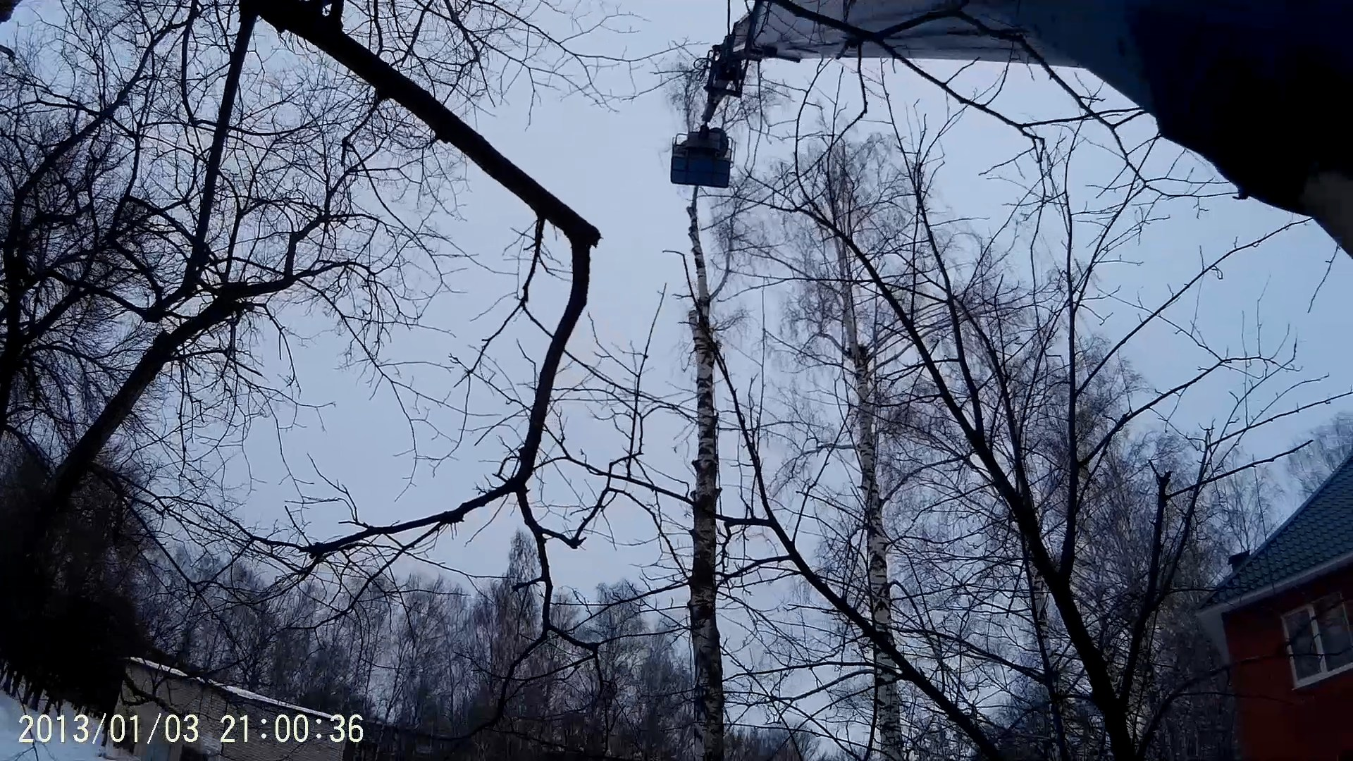 Спиливание деревьев в Пронске