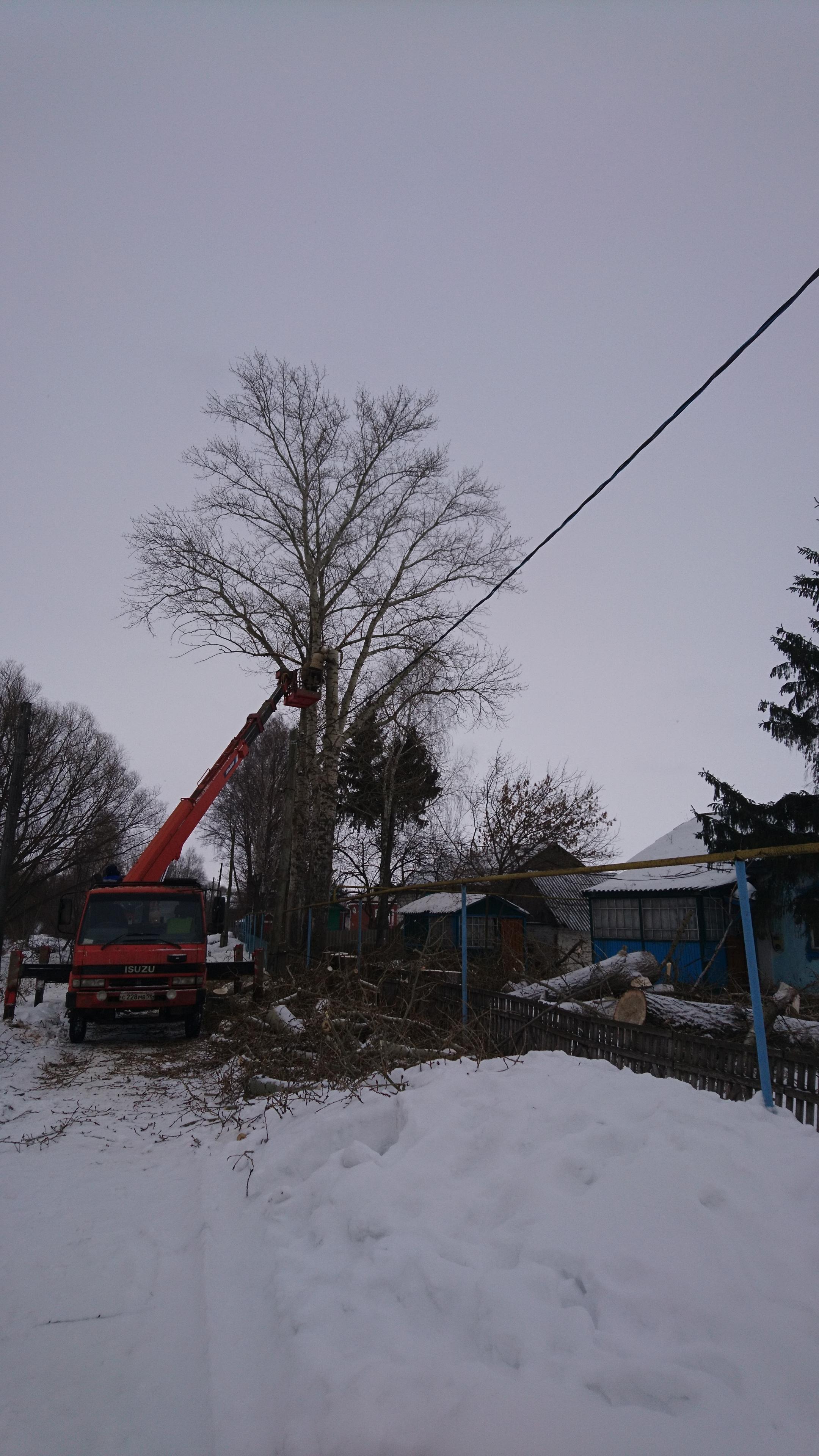 Удаление деревьев в Михайловском районе