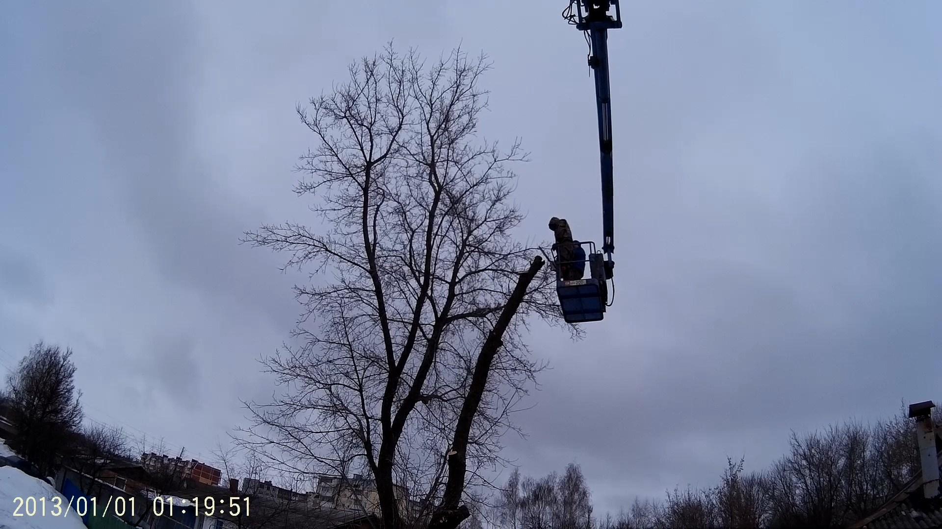 Спиливание дерева в Захарово