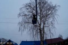 спил дерева по частям в Михайлове