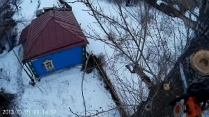 Кронирование деревьев около домов
